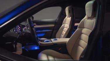 2020 Porsche Taycan - interior side view