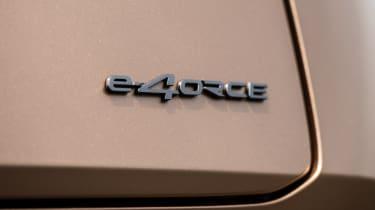 Nissan Ariya e-4orce badge