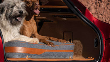 Aston Martin DBX pet pack - dogs in boot