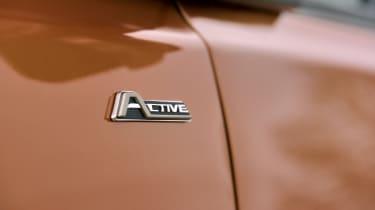 Ford Tourneo Custom Active badge
