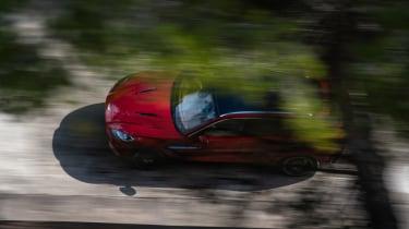 Aston Martin DBX - top view through trees