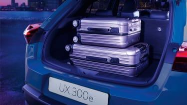 Lexus UX 300e boot