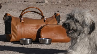 Aston Martin DBX luggage with dog
