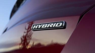 Ford S-MAX hybrid badge